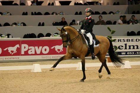 الفارس المغربي إسماعيل جيلاوي يفوز بالجائزة الكبرى لإشبيلية