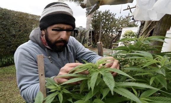 اعتقال 6 أشخاص و حجز 7 أطنان من مخدر 'الكيف' بوزان