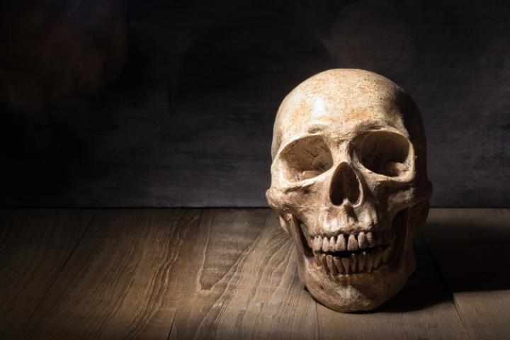 توقيف شخص بتمارة يتجول حاملا بيده جمجمة بشرية... وهذا ما كشف عنه التحقيق