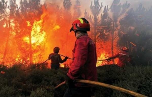 في وقت متزامن نشوب عدة حرائق بطنجة وأصيلة وتسجيل خسائر جسيمة